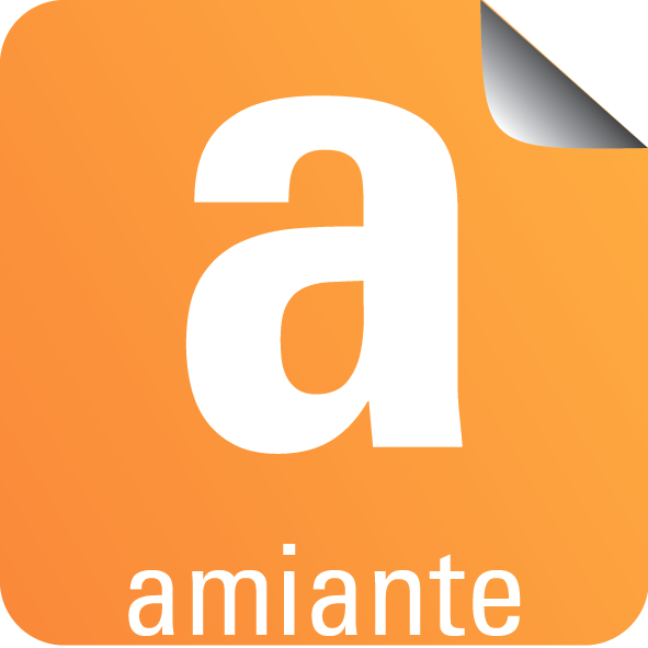 Diagnostic Amiante avant Vente mention