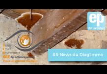 Le Finistère rend obligatoire l'état parasitaire dans 6 communes