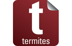 ZOOM SUR... LE DIAGNOSTIC TERMITES