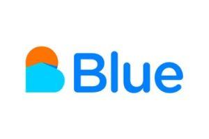 Blue : l'agence immobilière connaitra-t-elle le destin des banques en ligne ?