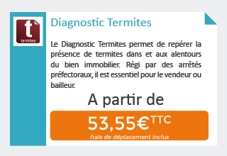 diagnostic termites la recherche des parasites du bois allodiagnostic. Black Bedroom Furniture Sets. Home Design Ideas